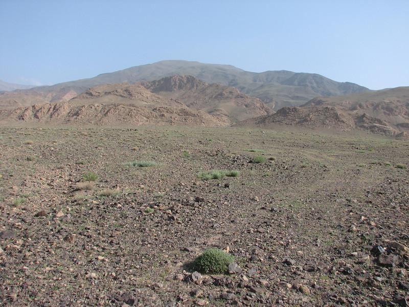 desert and the Kuh e Aladag mountains