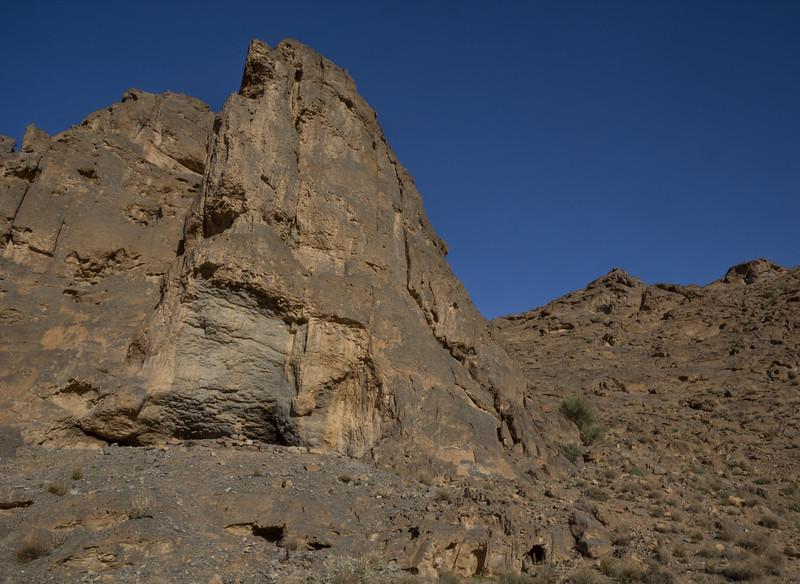 Habitat of Dionysia janthina