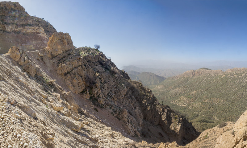 Chahar Tagh Pass, habitat of Dionysia revoluta ssp. canescens