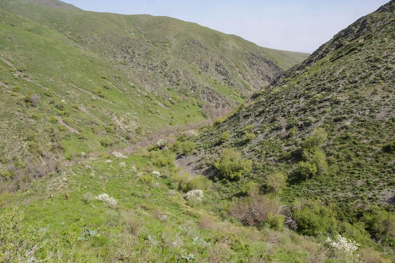 Berkara Valley