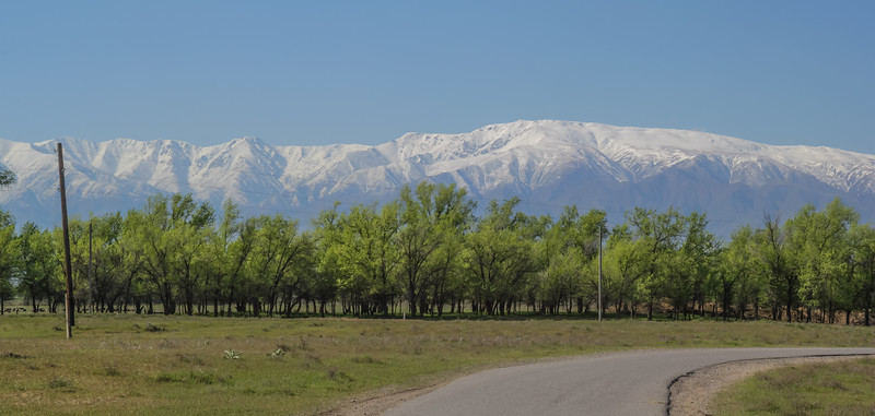 view at Kirghiz Alatau 3820m from Moyumqum Sands