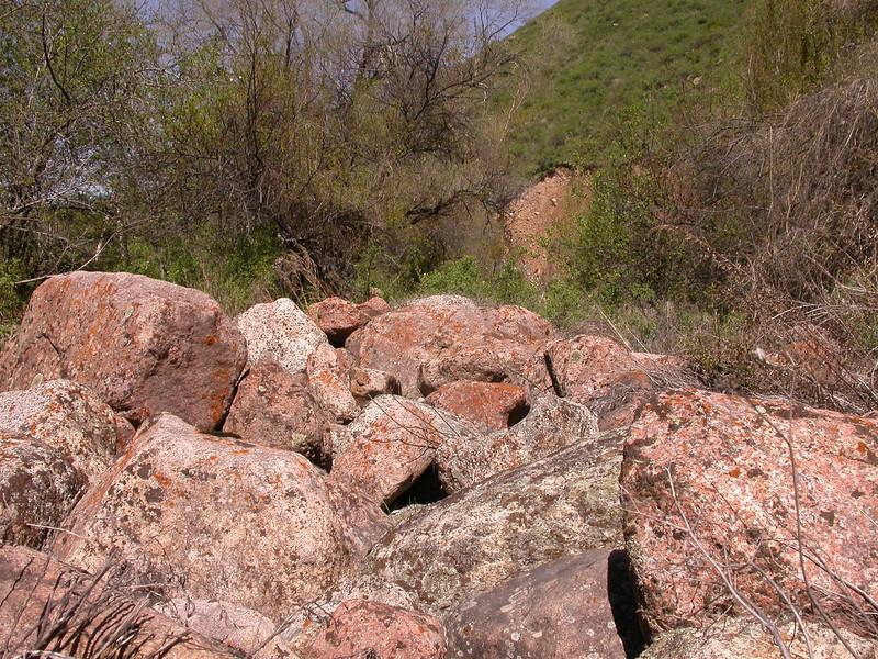 Granite bolders with Lichens