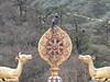 Corvus macrorhynchos, Large-billed Crow, Monastery, Deboche 3650m