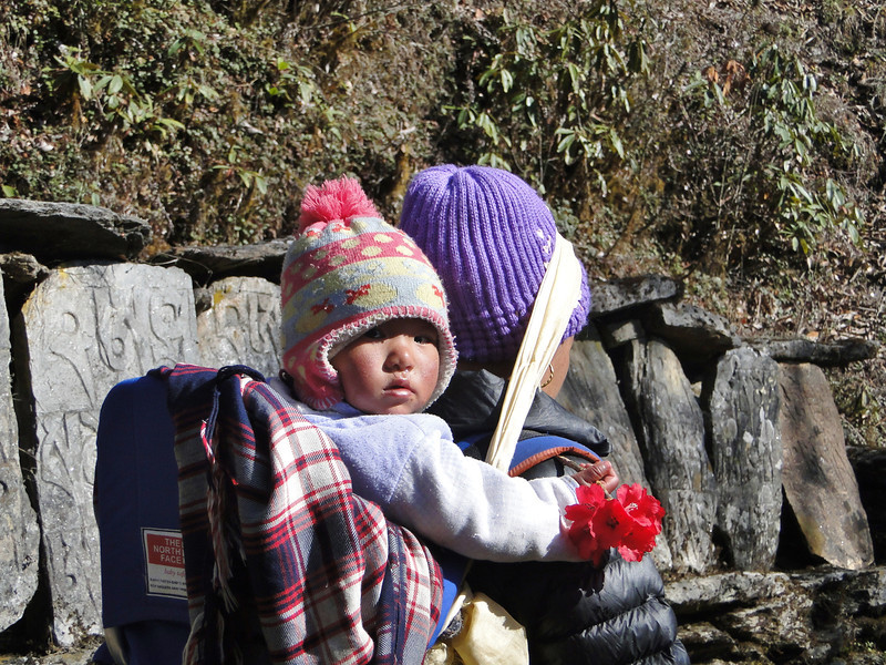 Sherpa child with Rhodo-flower