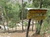 Forest Nursery, Monjo 2900m-Namche Bazaar-Tengboche-Deboche 3630m