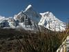 Ephedra gerardiana, Amai Dablang 6856m, Chhukung 4780m