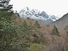 near  Deboche 3650m