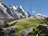 Thylacospermum caespitosum and Laila Peak 6400m