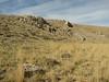 Habitat, limestone, Ziyaret Gecidi 1900m [3] (Gurün-Pinarbasi)