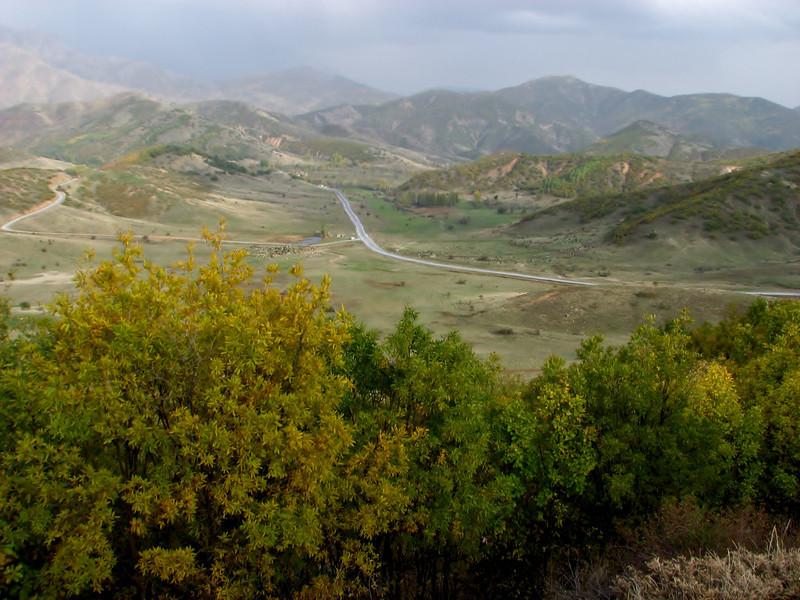 In the background, habitat of Crocus karduchorum, wooded hills with little oak shrubs,of Quercus petraea ssp. pinnatifida and Q. libani,  Ihtiyarsahap Daglari, Bitlis-Hizan [8]