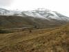 Habitat of Crocus cancellatus ssp. damascenus, 1600m near Delezi Gecidi 2100m (Yüksekova-Esendere [Iran])