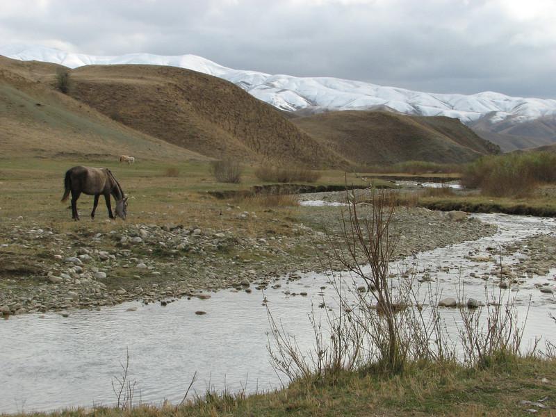 Landscape [Iran] Esendere -Yüksekova, 1600m [14a]