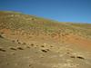 Habitat on Kubbe Gecidi 1880m (Tepehan-Malatya)