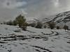 Dileze Gecidi, 2100m, Esendere (Iranian border)- Askale