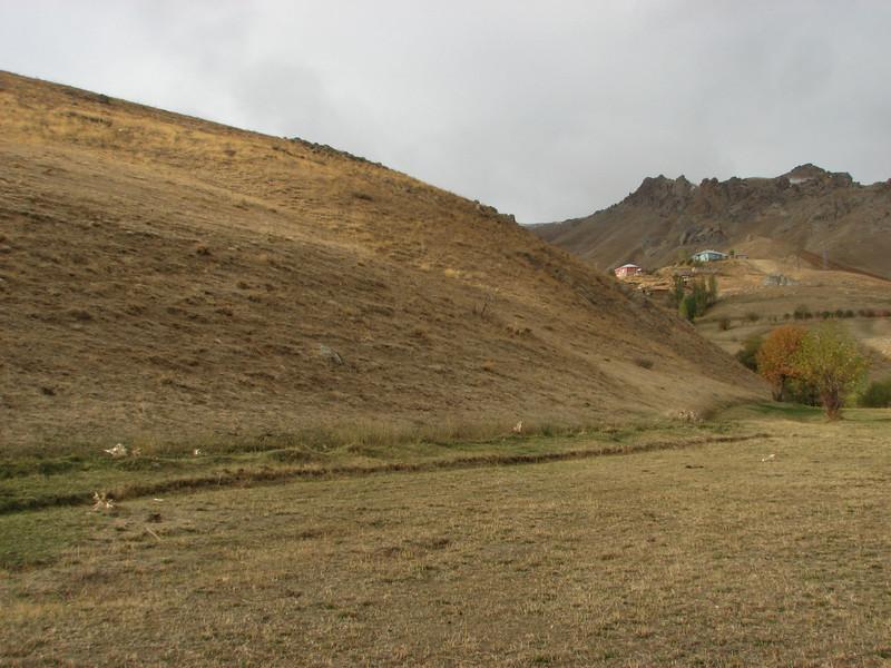 Habitat of Crocus kotschyanus ssp. hakkariensis, South of Deleze Gecidi 2100m, N.E. of Yüksekova [14b]