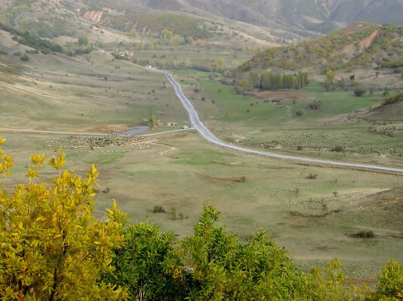 Habitat of Crocus karduchorum, wooded hills with little oak shrubs,  Ihtiyarsahap Daglari, Bitlis-Hizan [8]