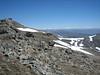Draba polytricha, Soganli Gecidi  2230m, Palandoken mountains