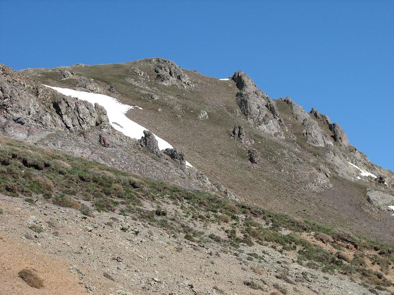 Draba polytricha habitat, Kostandagi Gecidi 2280m