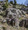 Limestone rocks, habitat of Aubrieta deltoidea