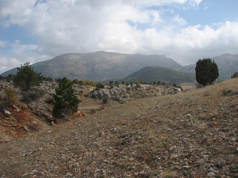 habitat of Crocus pallasii ssp. dispathaceus (Between Besehir and Akseki, Konya Province)