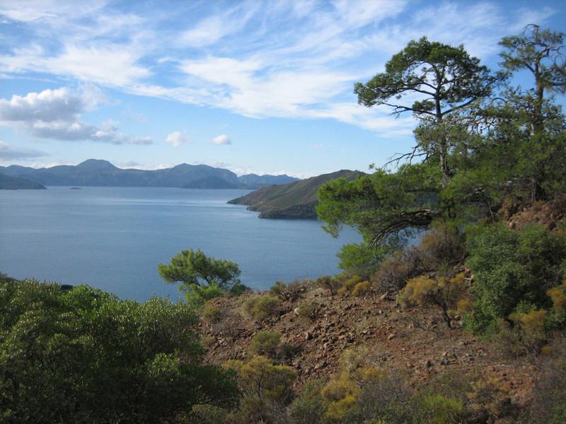 Landscape with Pinus brutia (A few km past junction to Bozborun on the Marmaris - Datça road, about 200m altitude on serpentine)
