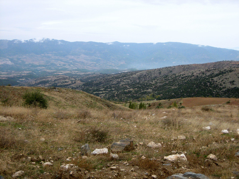 habitat of Acantholimon ulicinum (from pass in the mountains above the town of Babadağ, 2 km west on a dirt road, about 1450m altitude)