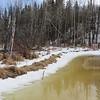 Beaver Dam at Beaver Pond