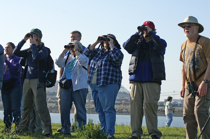 Looking for the burrowing owl.<br /> (Photo courtesy of Chris Kruger)