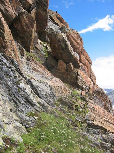 Habitat of Androsace vandellii