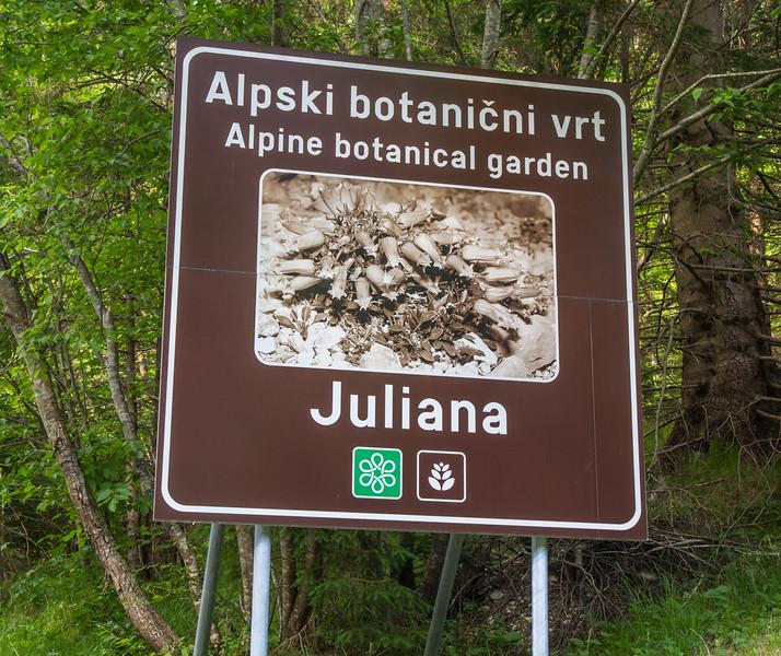 Rockgarden Juliana, Trenta
