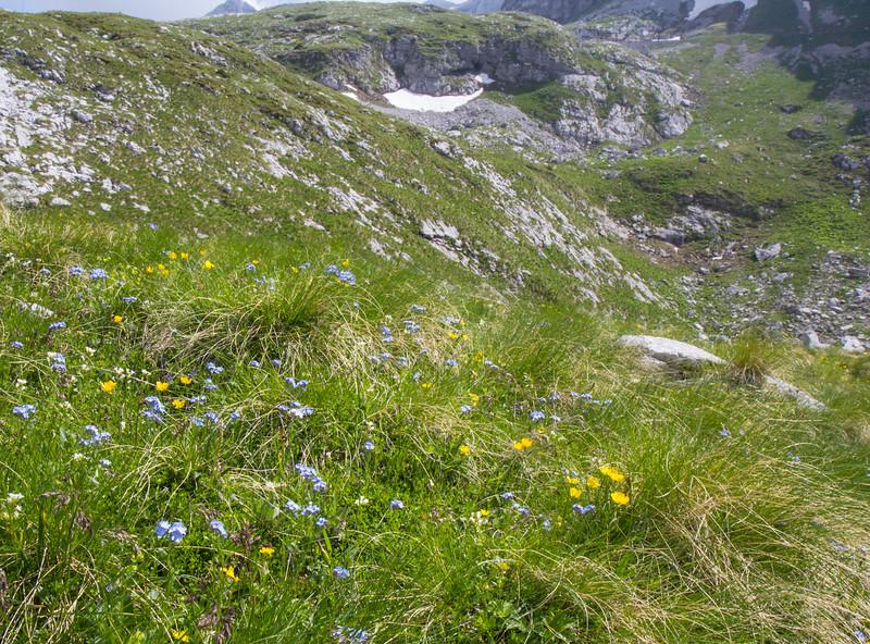 near Mountain Mangart 2679m, NW SLO, border Italy