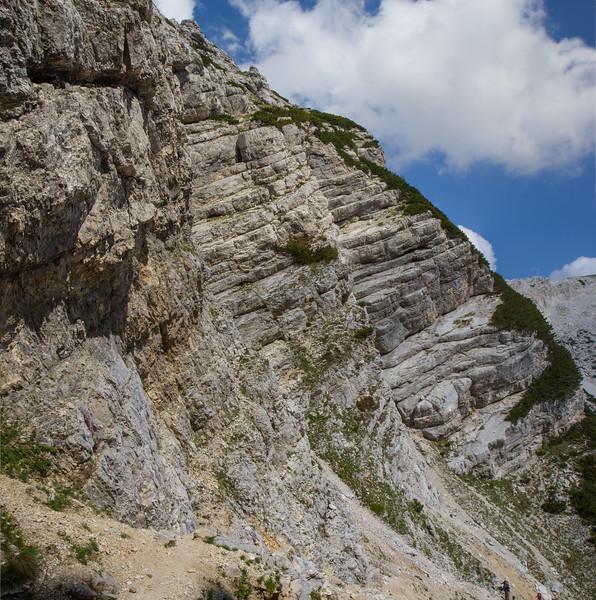 Limestone, rocks and scree habitat
