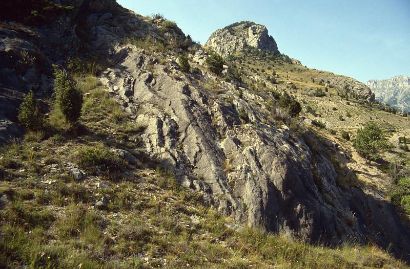 dry habitats in the Queyras