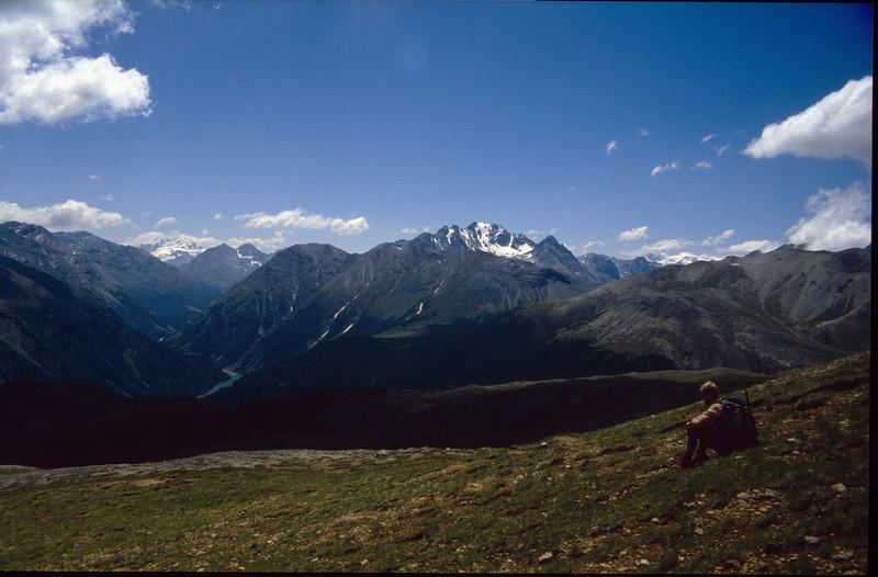 Munt la Schera 2580m habitat of many alpine plants (National Park, Graubunden)