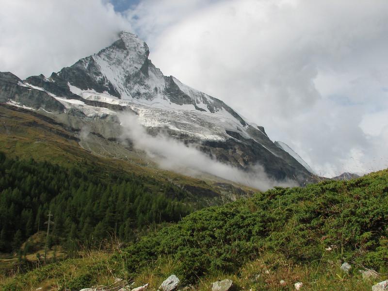 Juniperus sabina and Matterhorn 4478m.