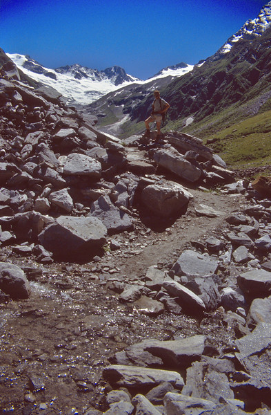 acid rocks and wet habitats (melting snow)
