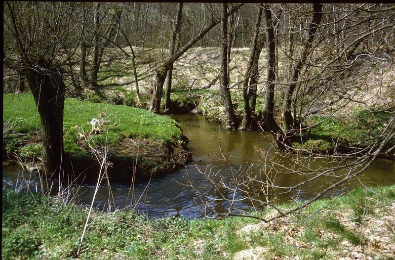 Hohnbach (Hohnbachtal, La Calamine,Belgium)