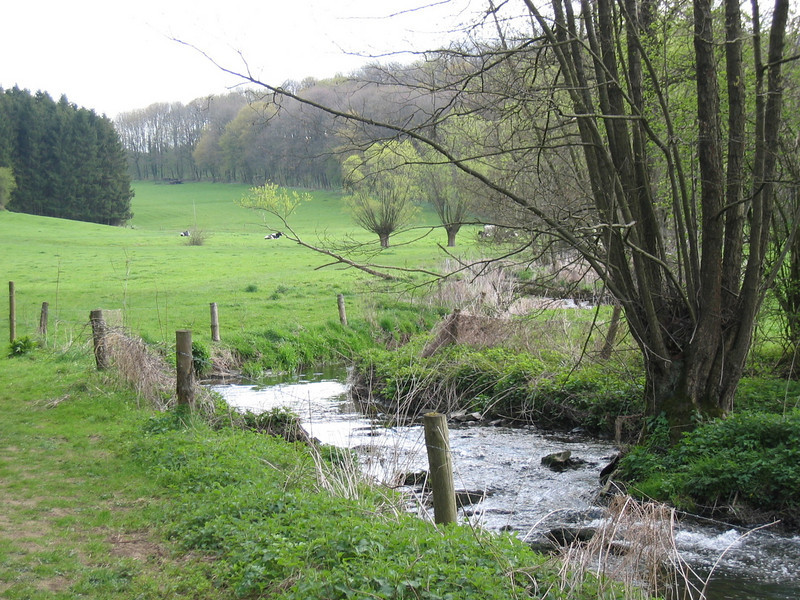 Hohnbachtal, La Calamine,Belgium