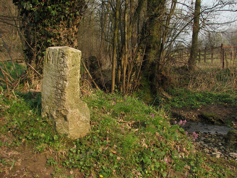 old boundery marker (Moresnet) (Hohnbachtal, La Calamine,Belgium)