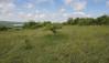 Calcareous grasslands