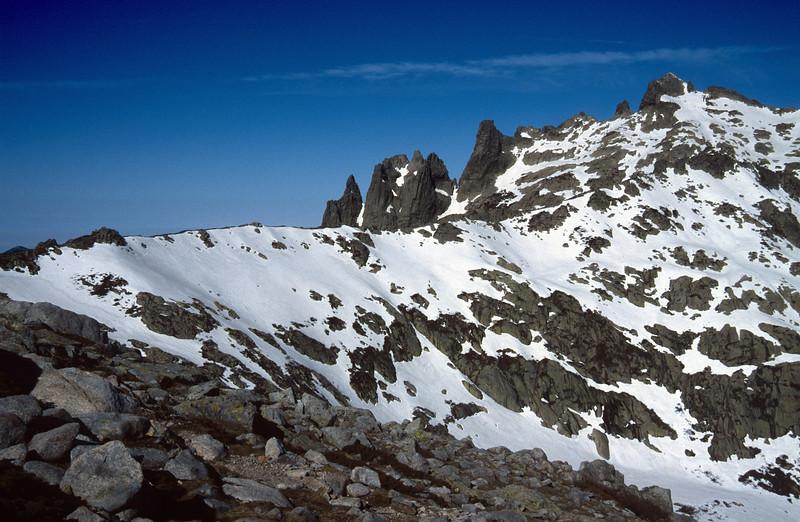 Alpine, nivale zone