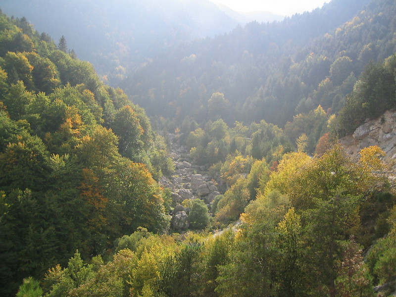 Deciduous woodland (Between Litochoro and Prionia at the foot of Mount Olympus)