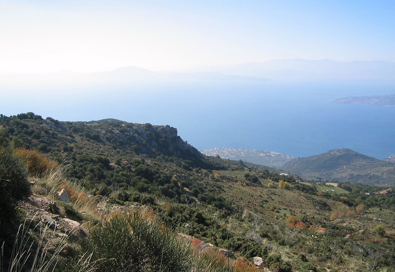 landscape near the coast