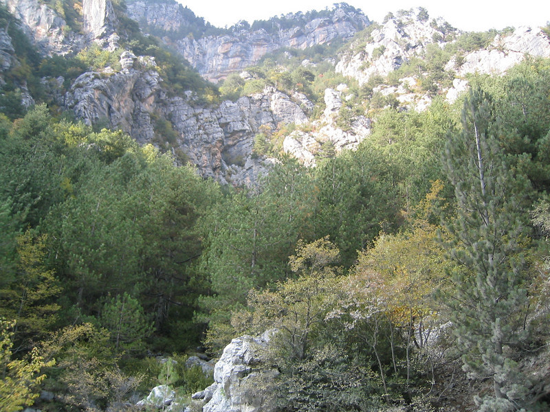 Lime stone rocks (Mount Olympus)