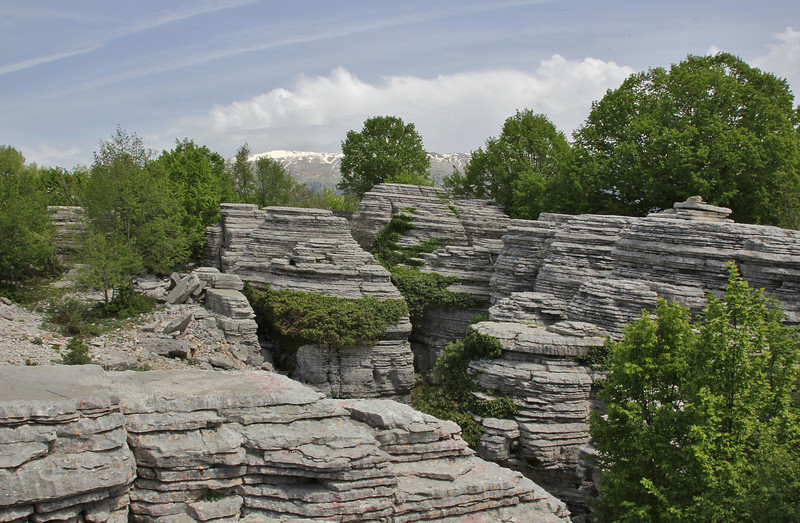 1300m Limestone rocks near the Vikos Gorge, Monondendri