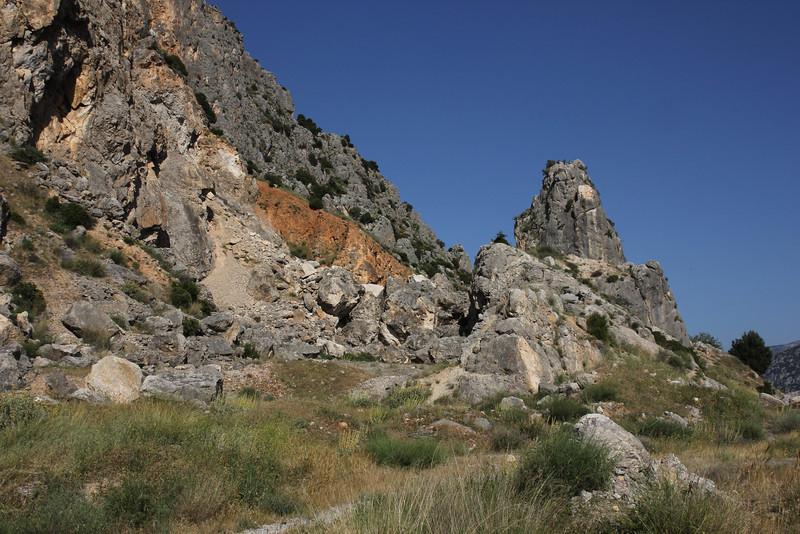 Limestone rocks with Daphne jasminea, N of Delphi bypass