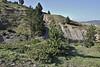 Juniperus communis ssp. alpina and Pinus nigra ssp. pallasiana, partially serpentine, Kataras Pass 1690m, N of Metsovo