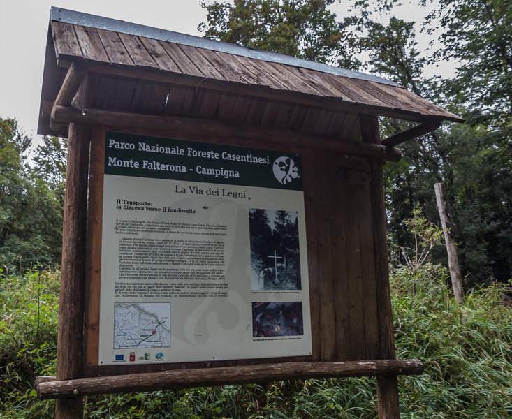 Parco Nazionale Foreste Casentinesi, Monte Falterona