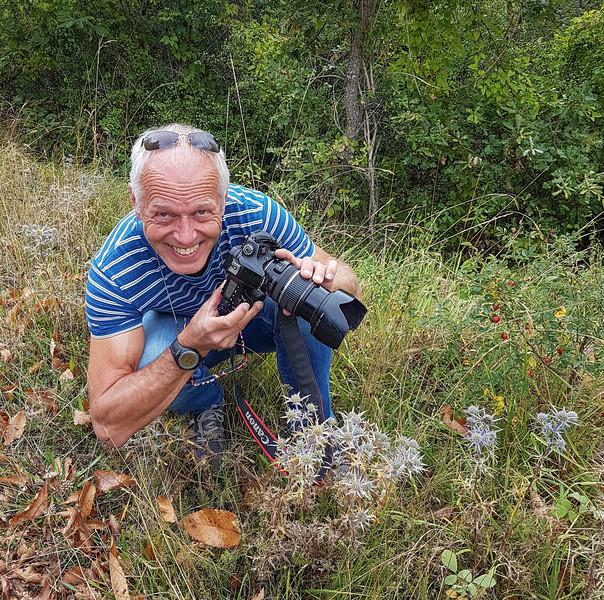 Photographing Echinops ritro