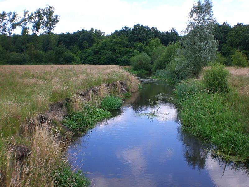 Tongelreep,(border Belgium/Netherlands) (near the abbey of Achel  (photo Henk Klok))